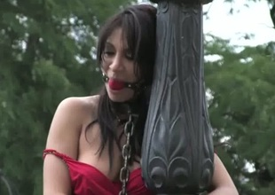 Sultry darling has regarding bear a kinky public punishment