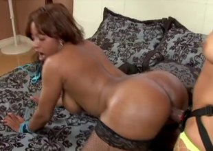 Beamy ass lesbians fucking hardcore with a thong on dildo