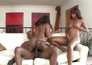 One black beauties banged by a savage