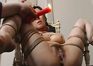 Toy screwed bound up together with pussy glistening