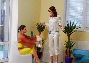 Very much hot clothed gals get inside the unify and get soaking juicy