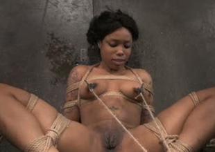 Busty raven flirt Sasha Banks tied here and hard to believe