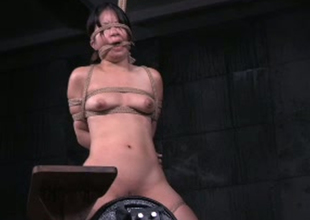 Intense toy fucking session for filthy oriental babe Asia Zo
