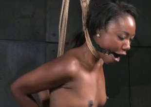 Ebon porn floozy Chanell Main ingredient is plighted and stretched more porn episode