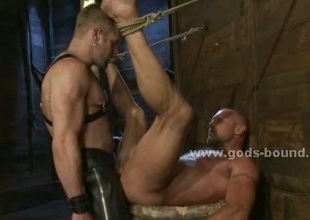 Hairless gay valorous sexual intercourse slave bound hard